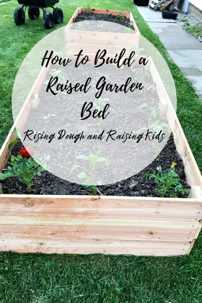 raised garden bed graphic
